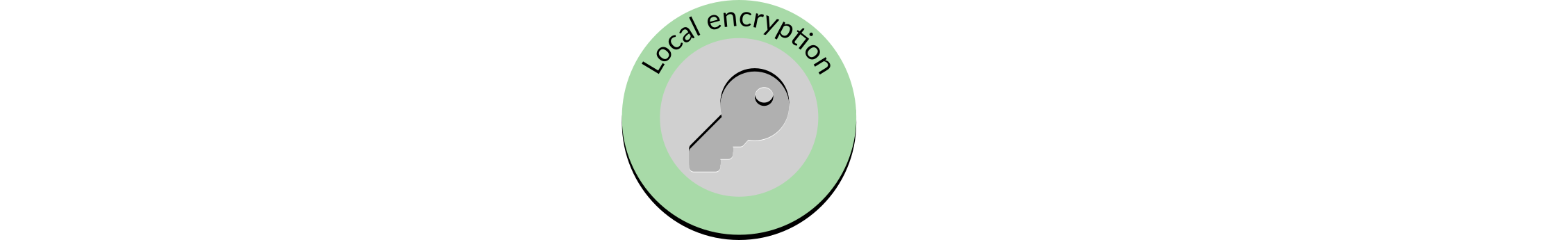 Encrypting the validator key